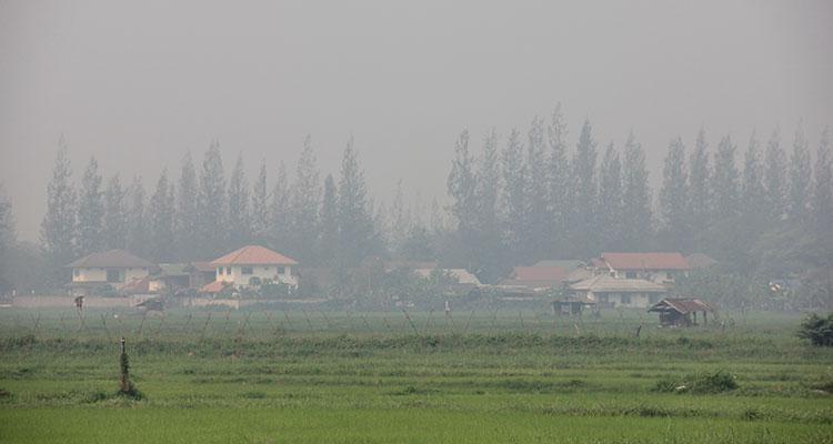 Toxic-dust-crisis